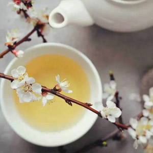 Fehér tea