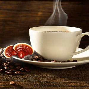 Ganoderma kávé és zöld kávé