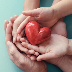 Szív és érrendszer