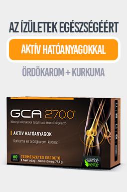 gca-2700jpg