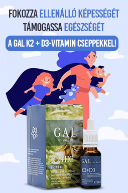 gal-k2-d3jpg